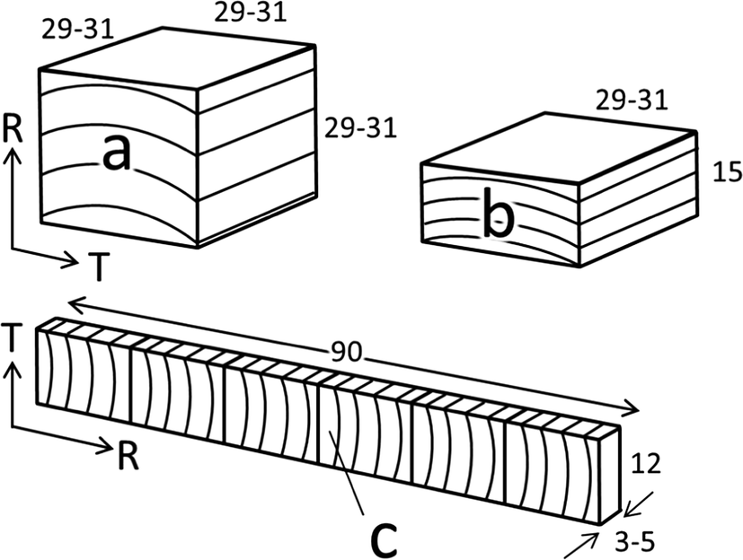 Shape Fixation Of Compressed Wood By Steaming A Mechanism Of Shape