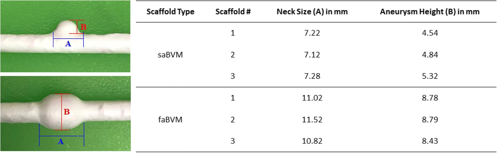 Tissue-engineered aneurysm models for in vitro assessment of