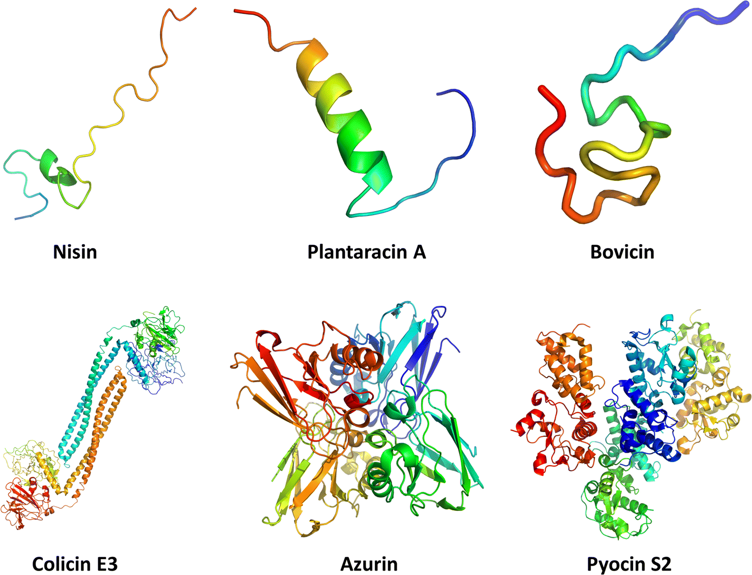 Bacteriocins: perspective for the development of novel