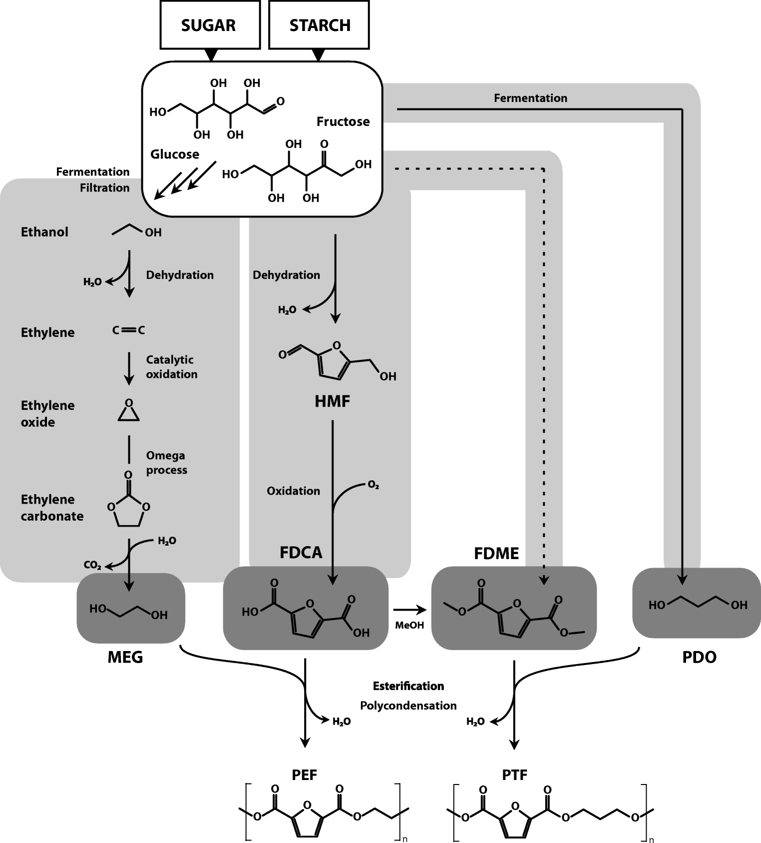 Recent developments in non-biodegradable biopolymers