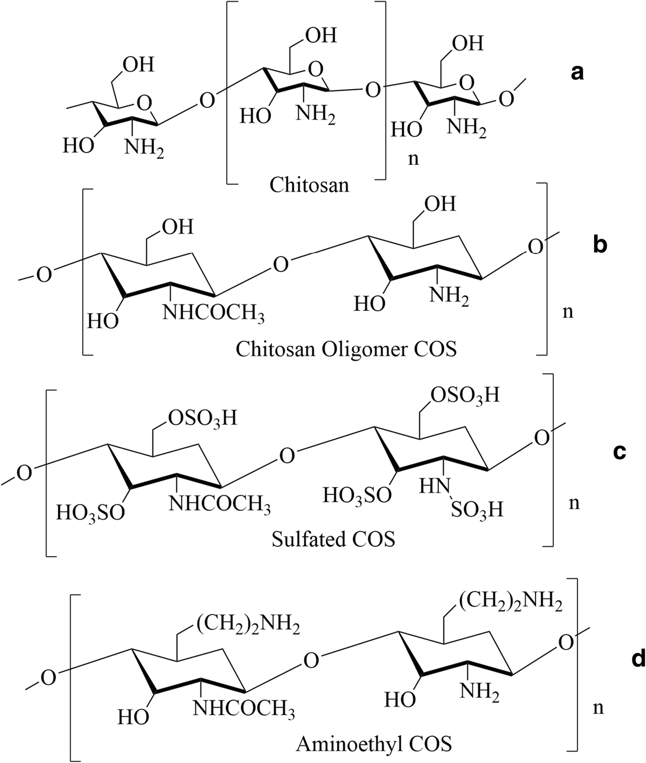 Chitosan and its derivatives: synthesis, biotechnological