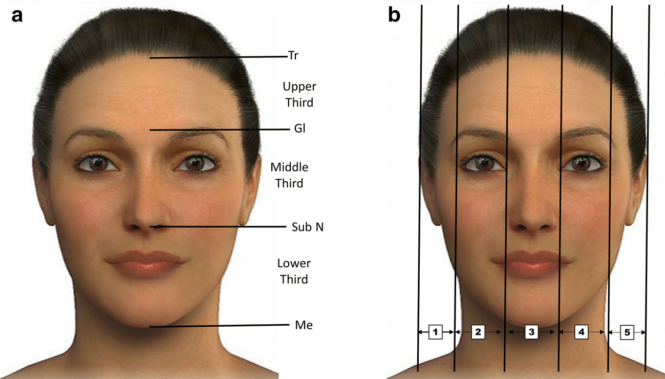 Facial Contouring by Using Dermal Fillers and Botulinum