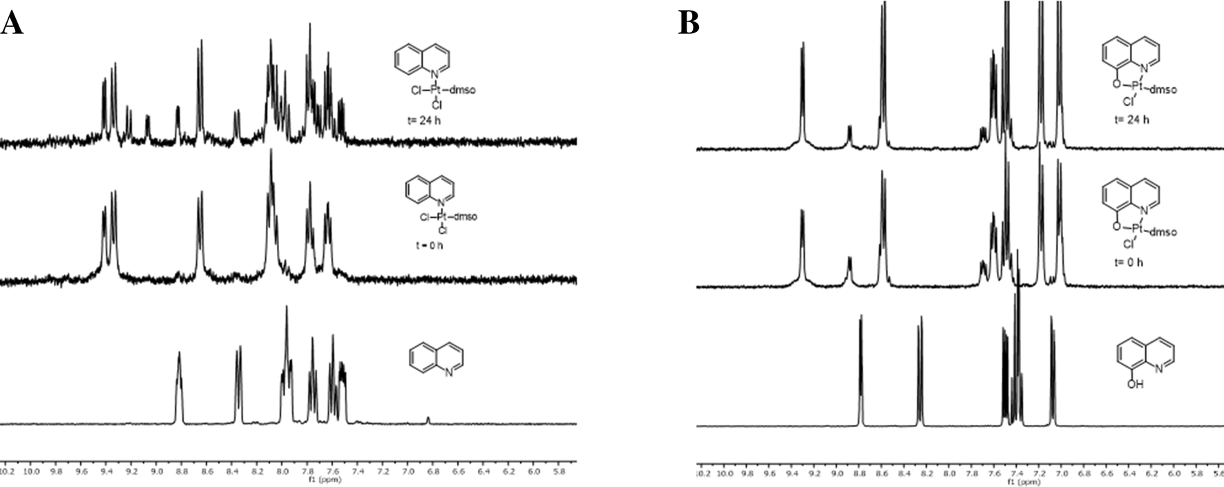In vitro and in vivo anticancer effects of two quinoline