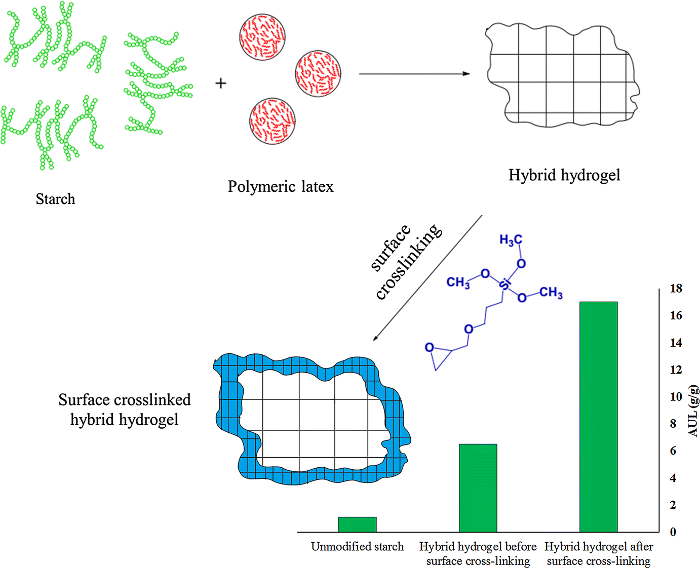 High gel-strength hybrid hydrogels based on modified starch