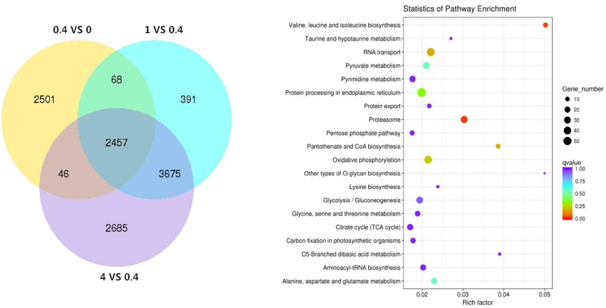 Transcriptomic and ionomic analysis provides new insight into the
