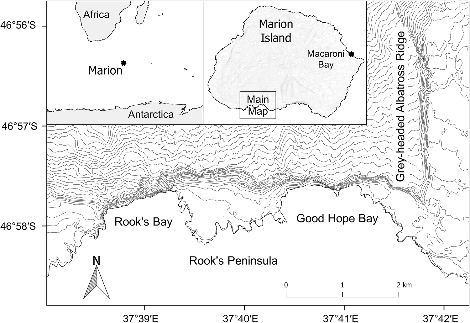 Plumage and bill abnormalities in albatross chicks on Marion