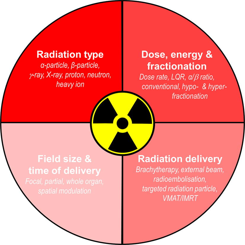 Radiation, inflammation and the immune response in cancer