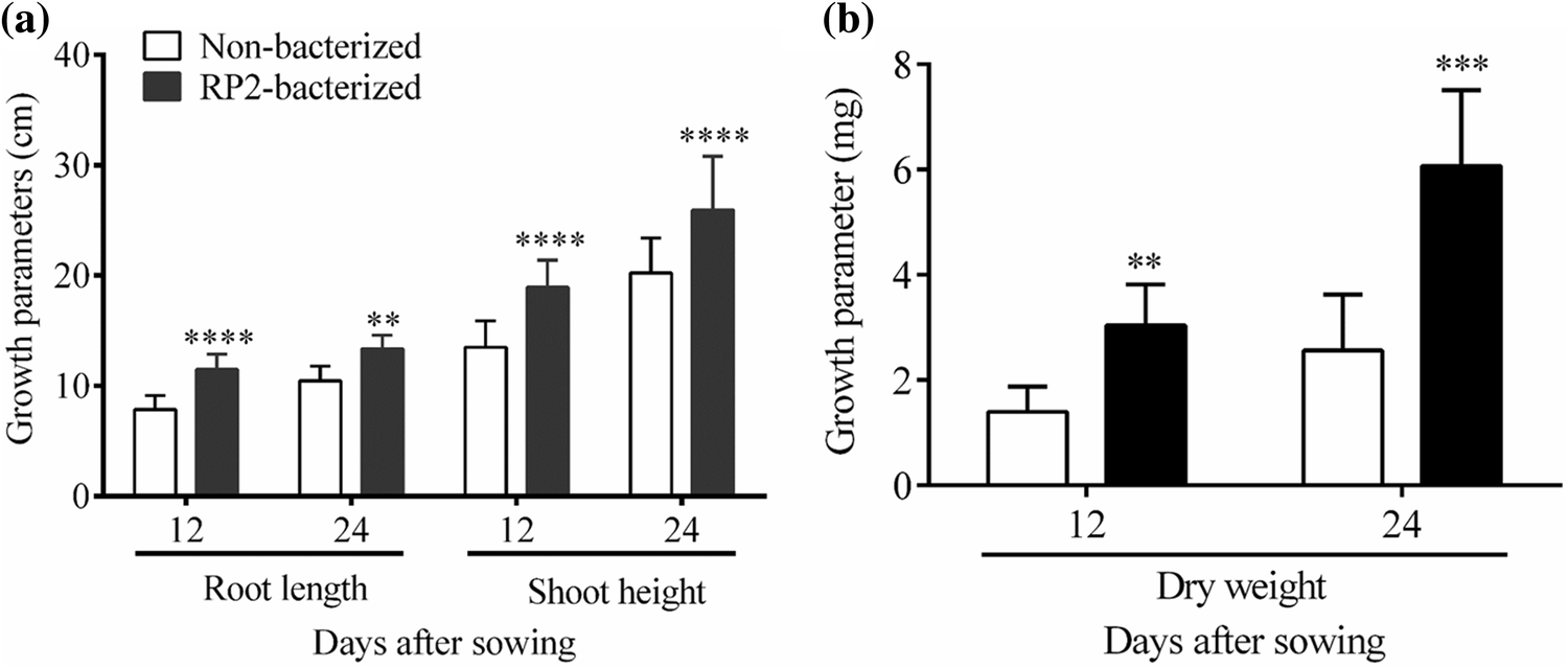 Changes in Root Exudates and Root Proteins in Groundnut