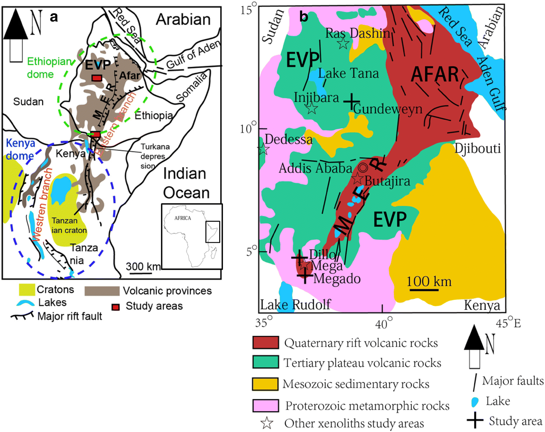 Transformation of continental lithospheric mantle beneath the East