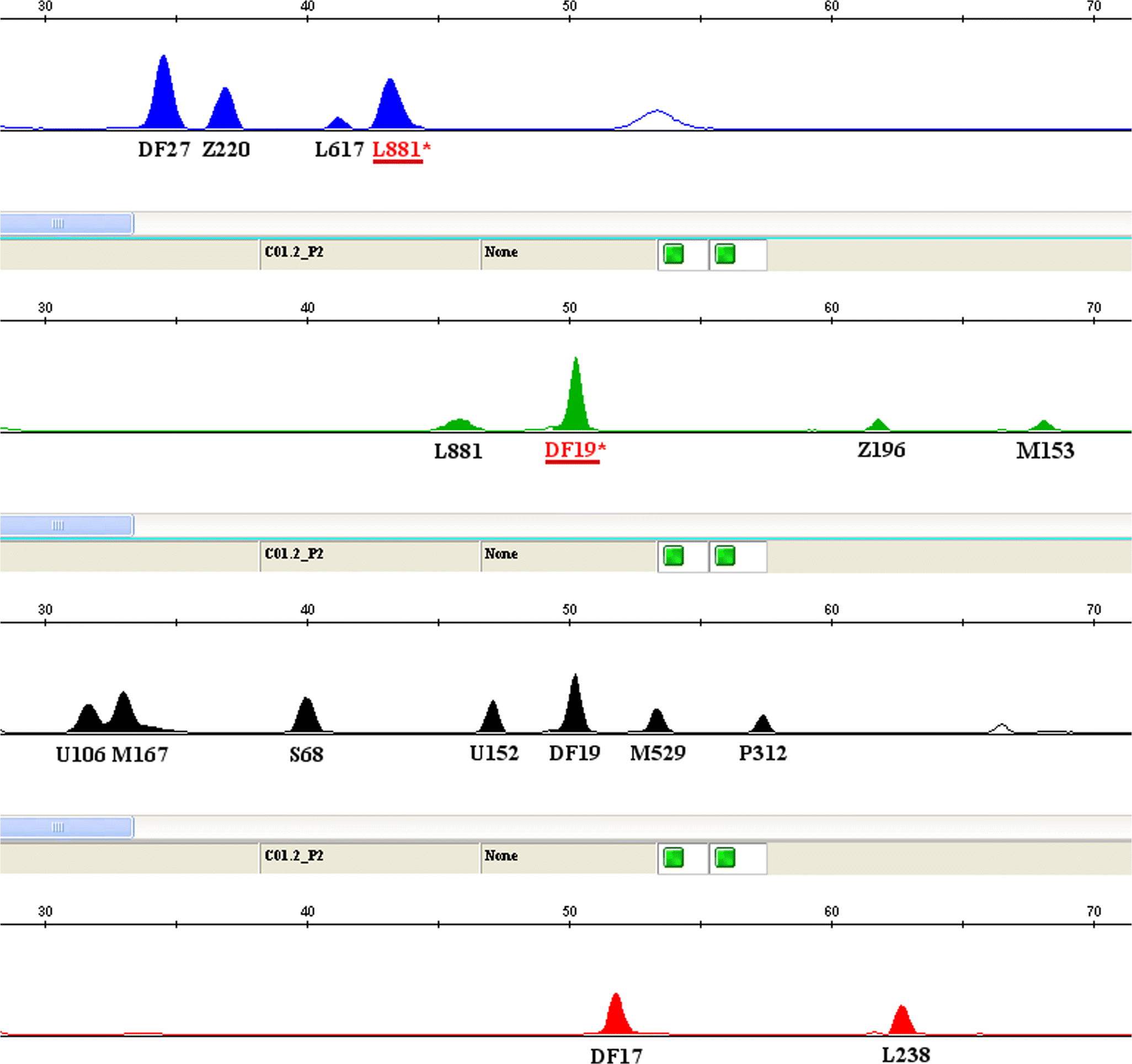 Effective resolution of the Y chromosome sublineages of the
