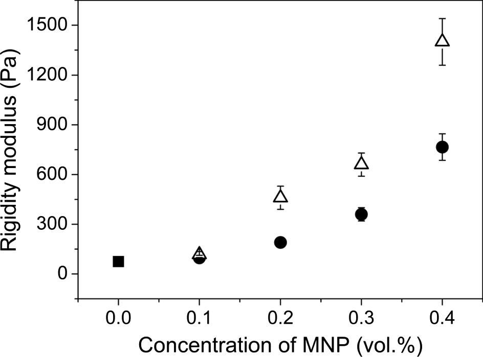 Rheological Properties Of Magnetic Biogels Springerlink