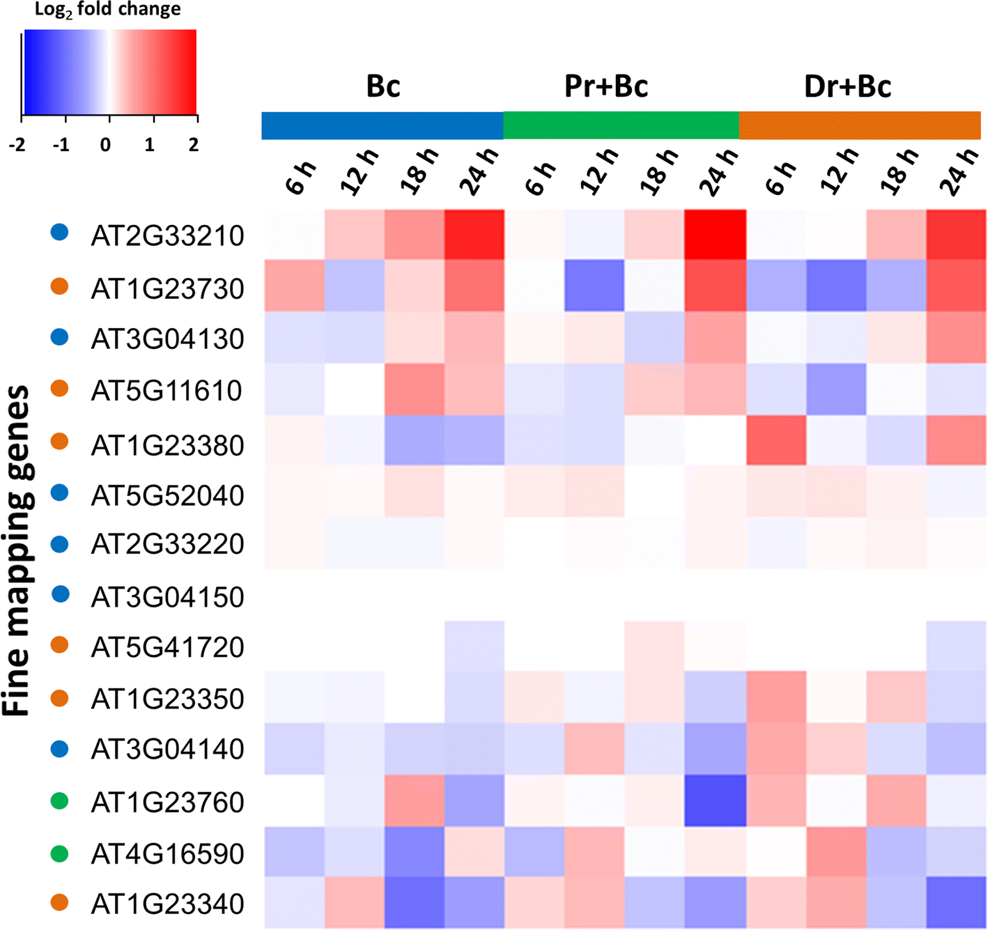 Mining the natural genetic variation in Arabidopsis thaliana for