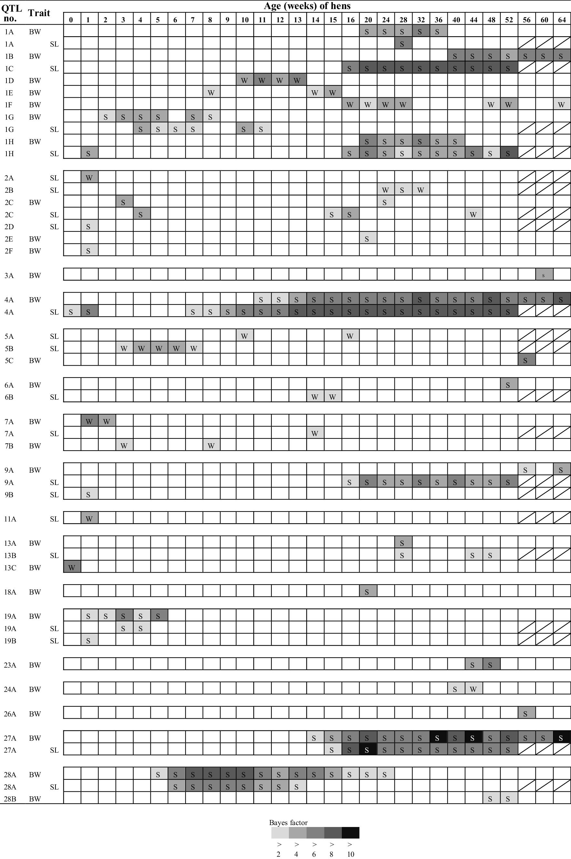 bw44 program pdf - bw44 program pdf