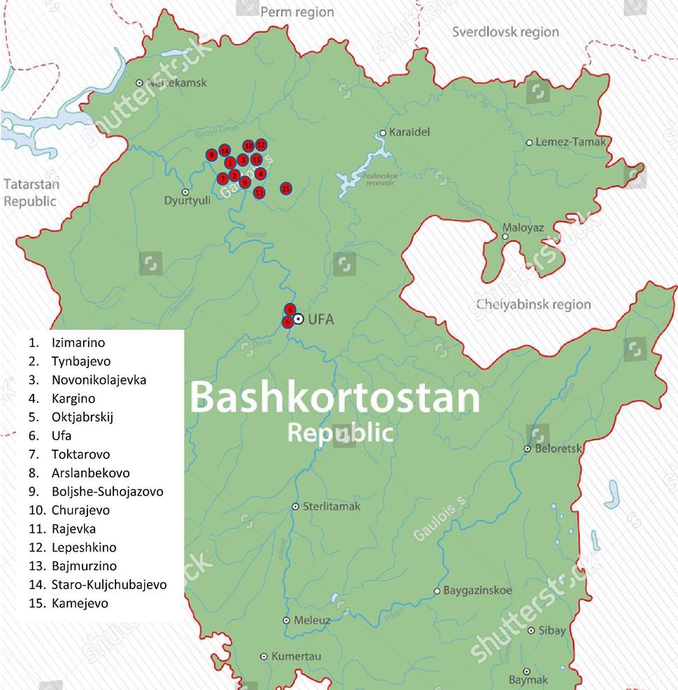 Genetic history of Bashkirian Mari and Southern Mansi ethnic