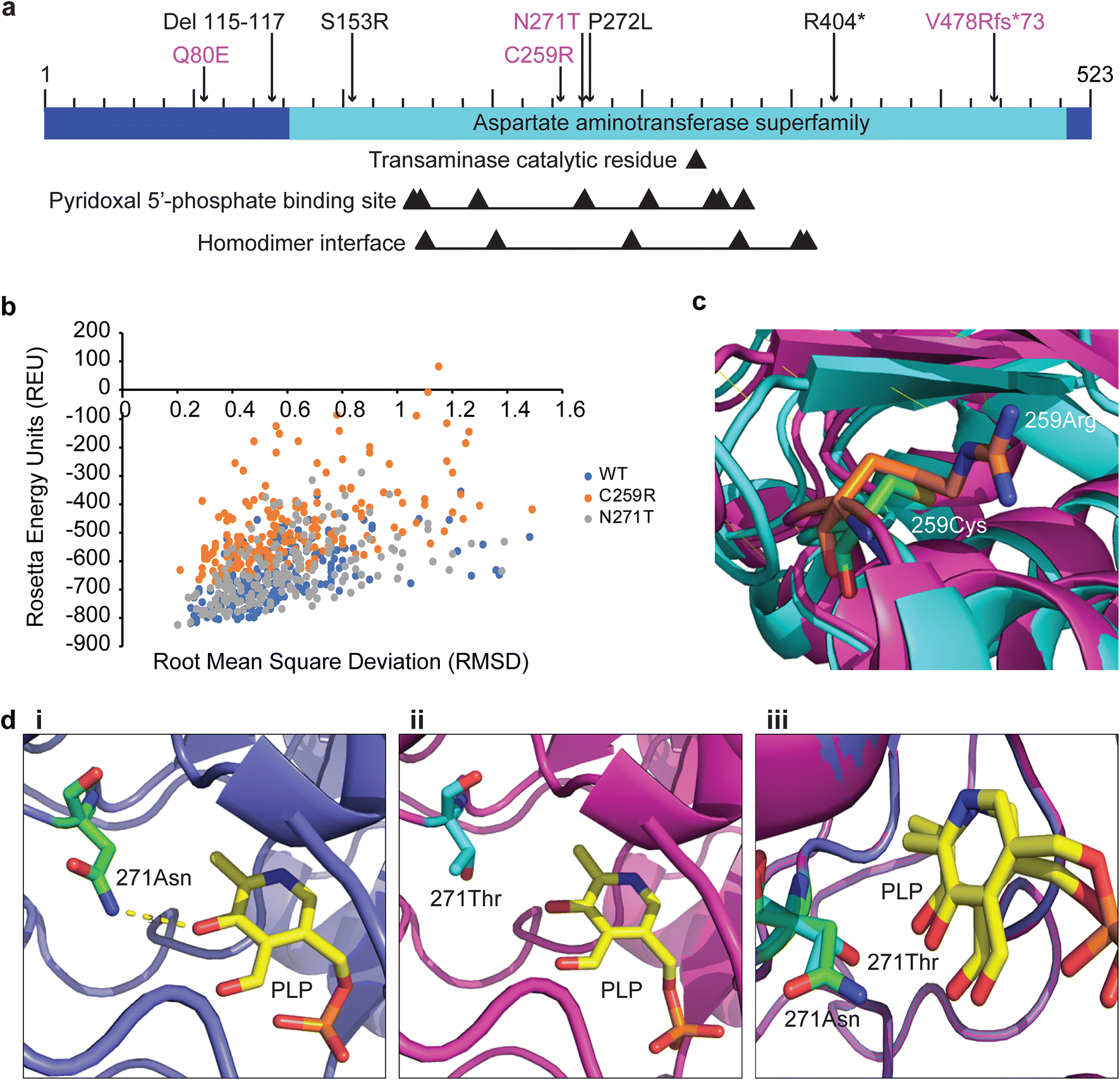 GPT2 mutations in autosomal recessive developmental