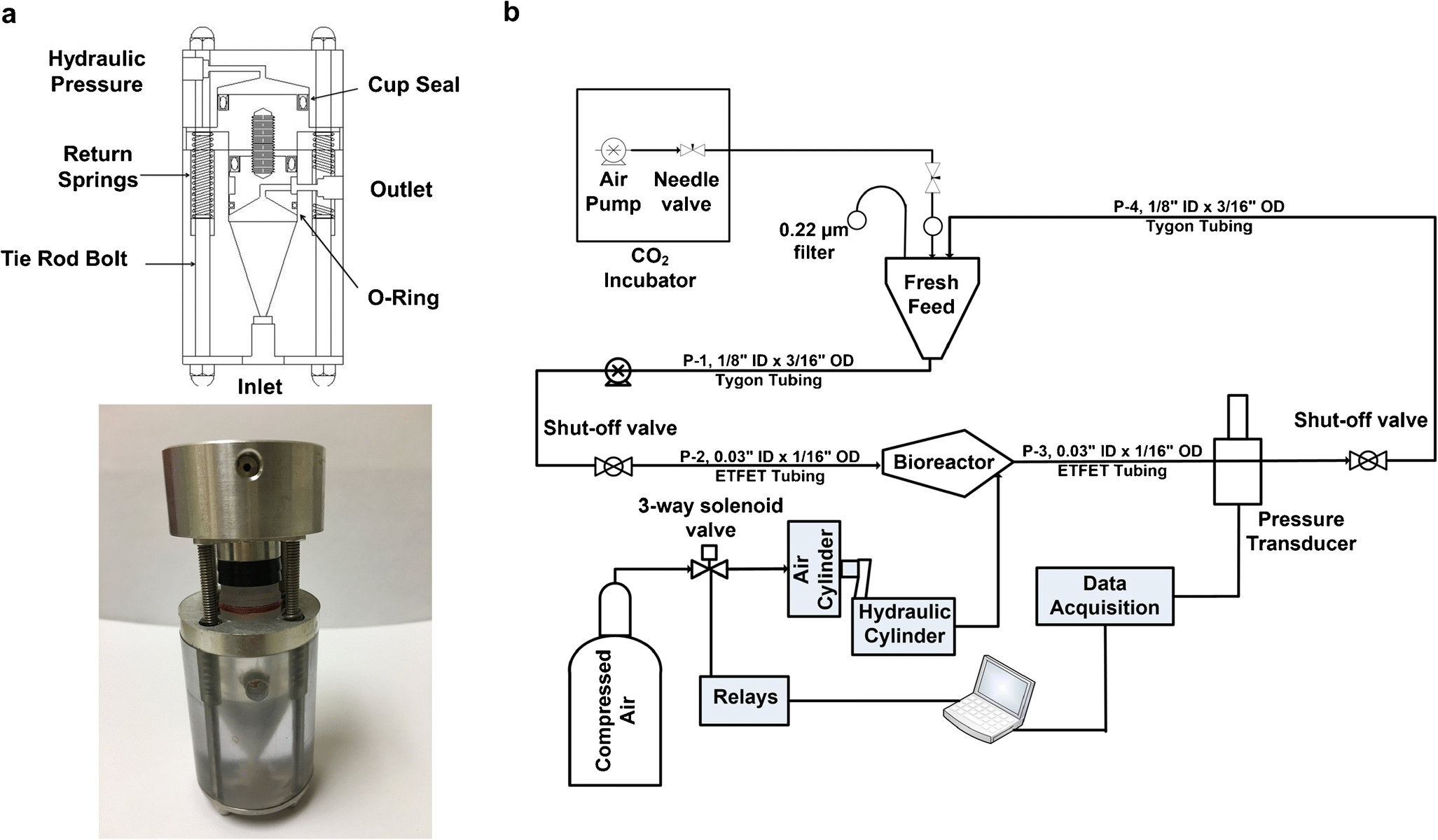 Correction To Combined Effects Of Oscillating Hydrostatic Pressure Air Cylinder Schematic Polycarbonate B Process Flow Diagram Perfusion Pressurized Computer Controlled Bioreactor System In Fig 2a And Bottom Portion