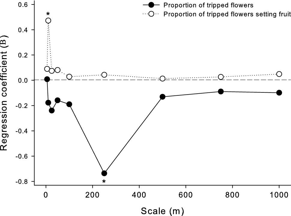 Scale-dependent effects of conspecific flower availability