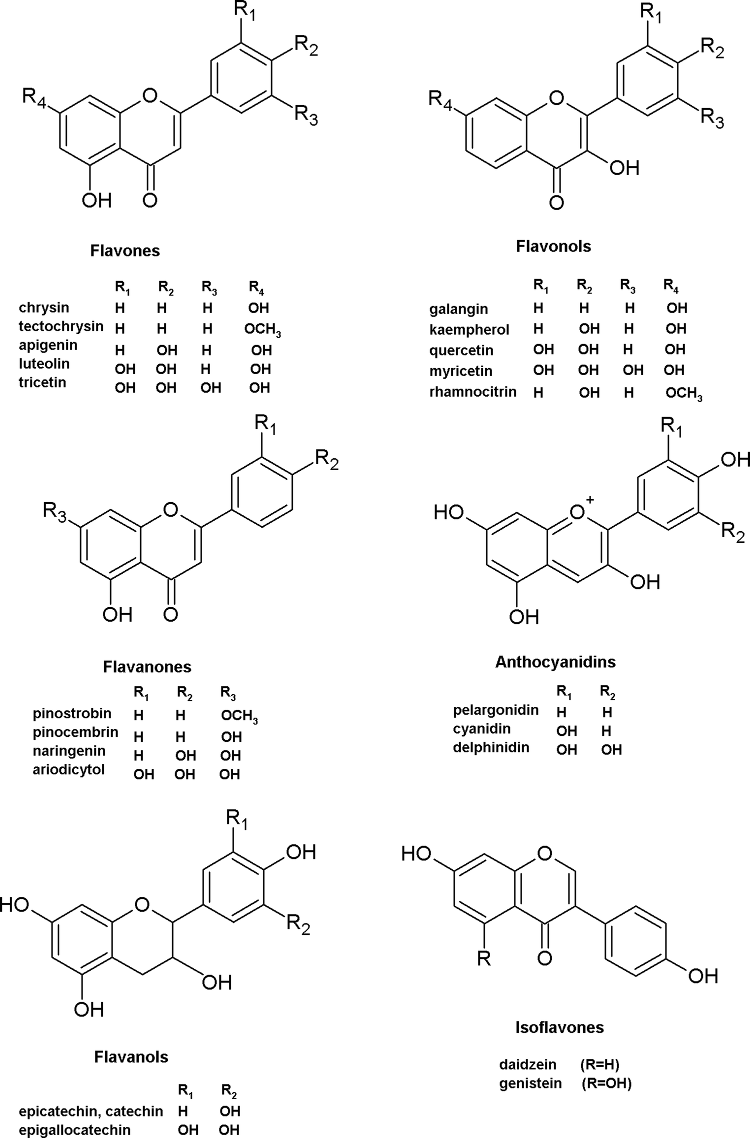 Characterization of bioactive compounds in the biomass of