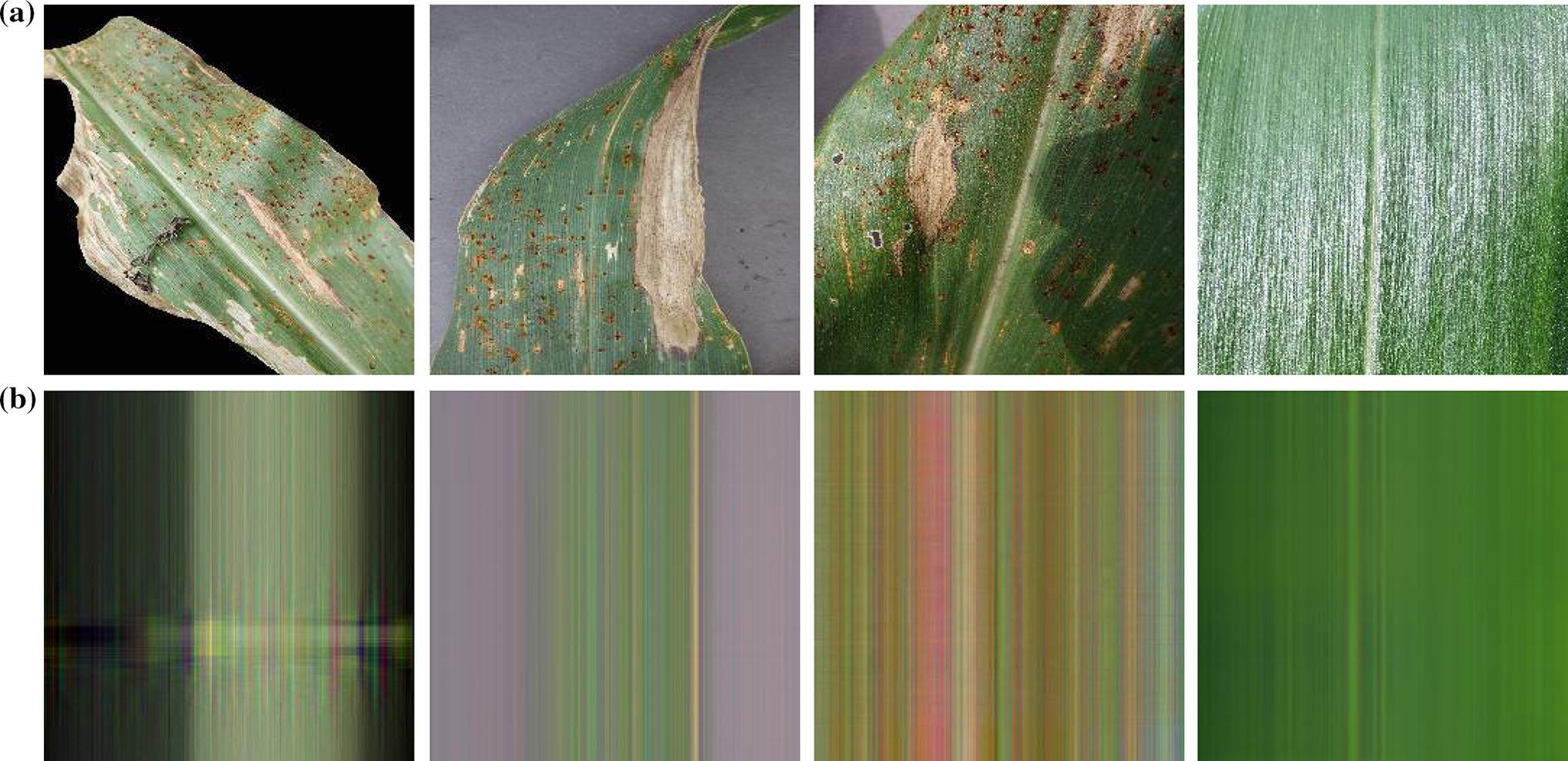 Maize leaf disease classification using deep convolutional