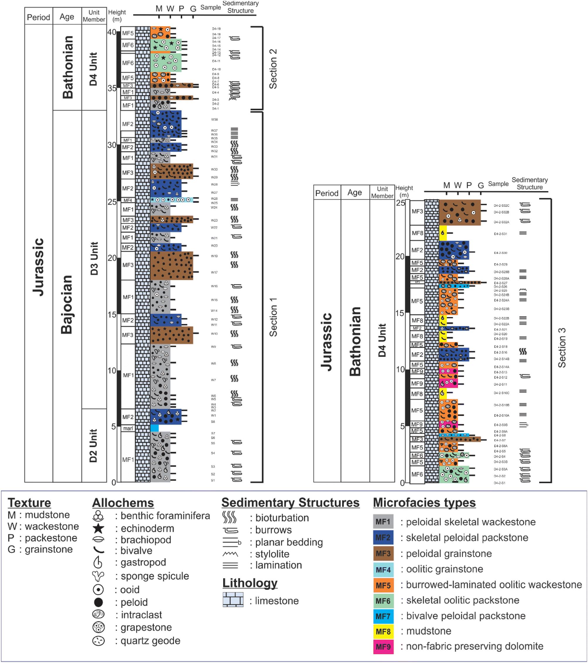 Microfacies, biofacies, and depositional environments of the