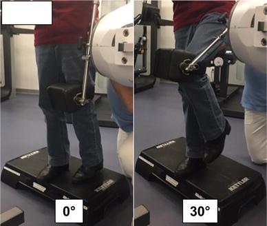 No difference in flexion power despite iliopsoas fatty