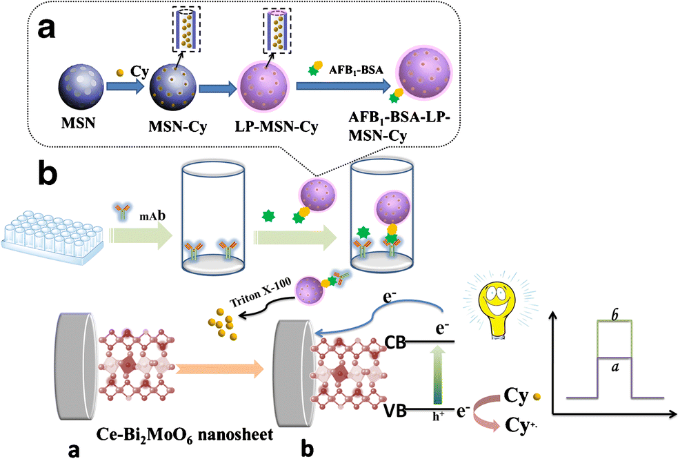 Liposome-coated mesoporous silica nanoparticles loaded with L