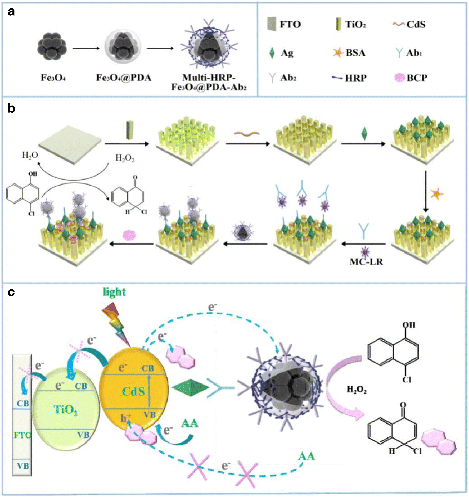 Magnetic nanoparticles for smart electrochemical immunoassays: a