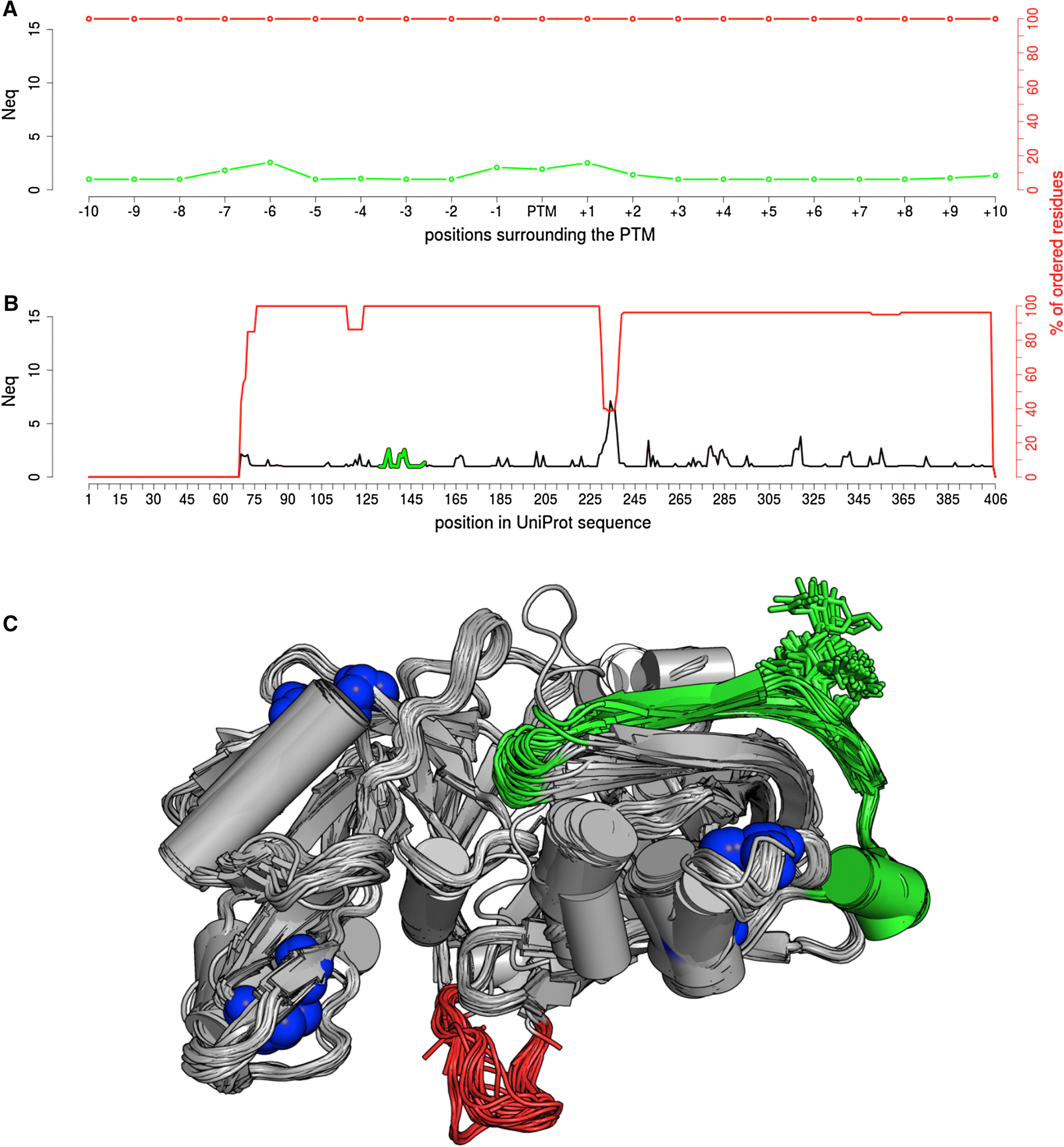 Investigation of the impact of PTMs on the protein backbone