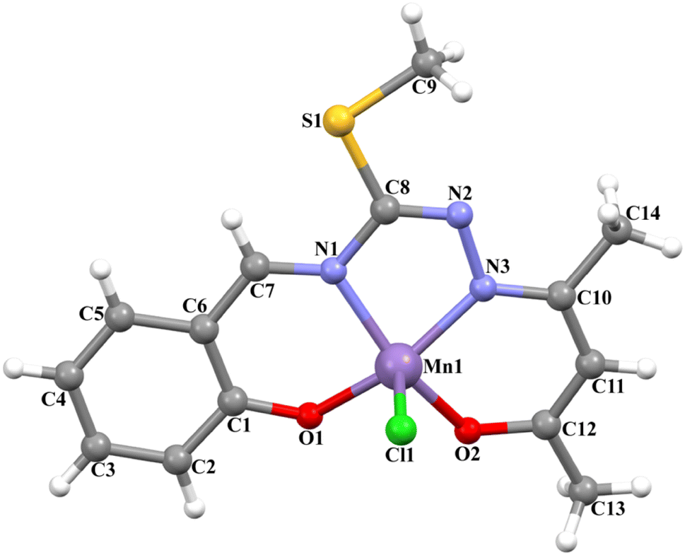 Structural Analysis And Biological Functionalities Of Ironiii And