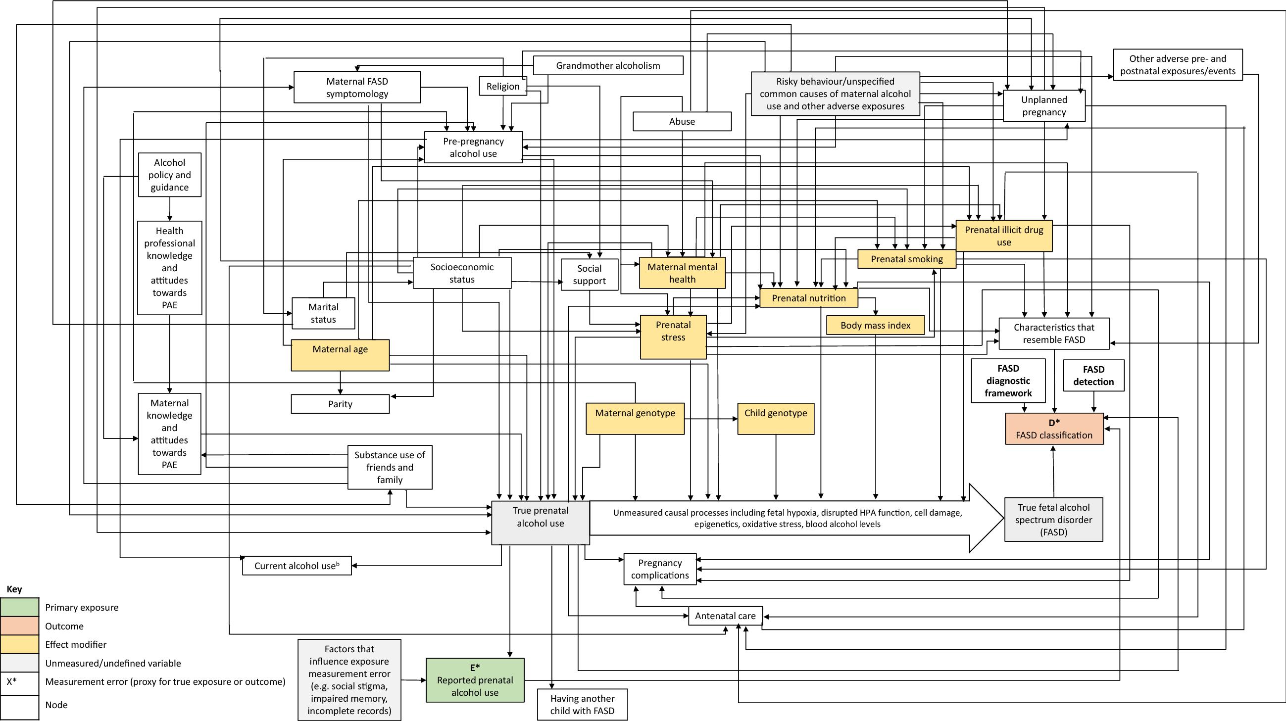 Causal Diagram Ses - Wiring Diagram Schematics on