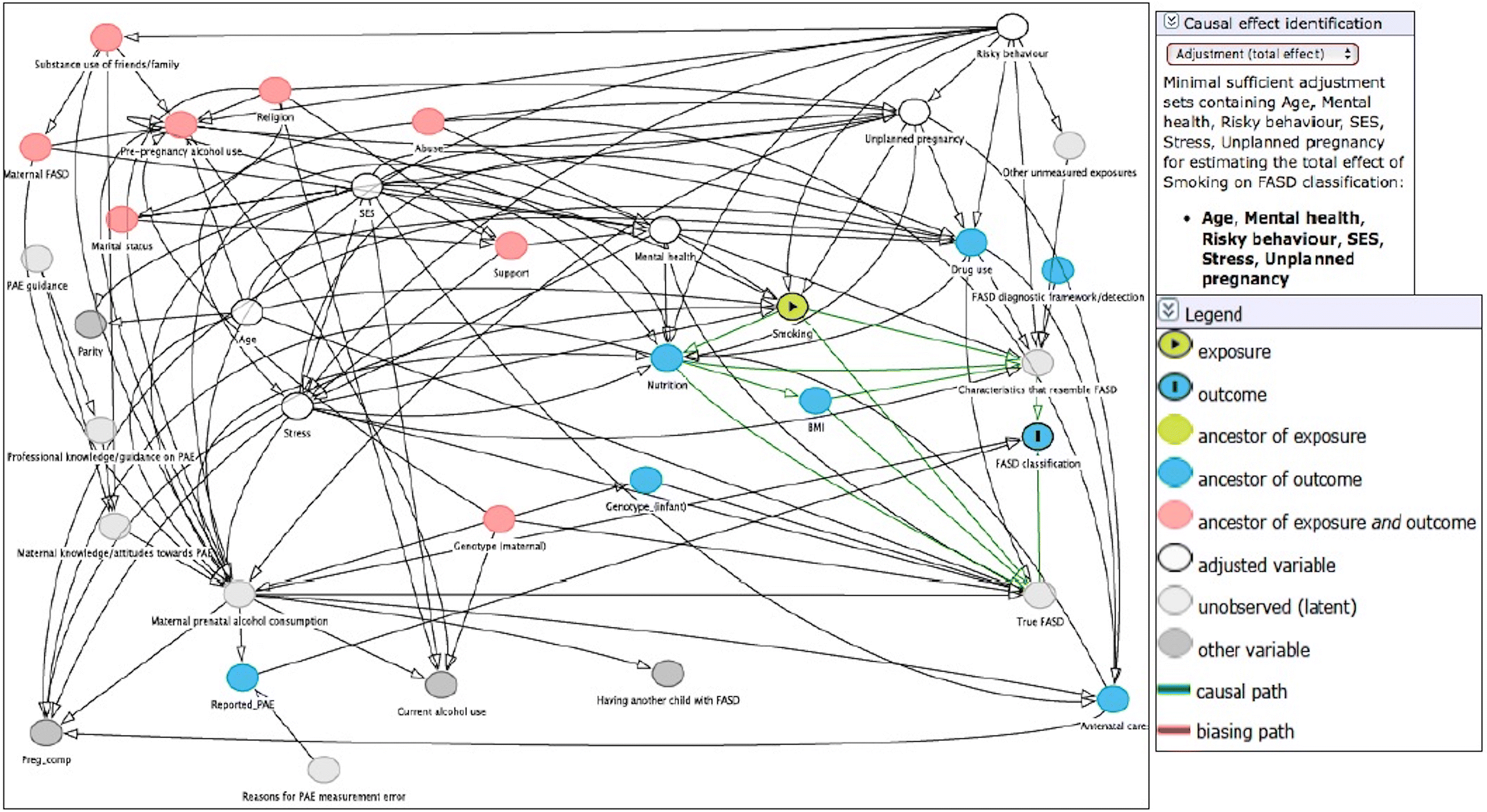 the causal web of foetal alcohol spectrum disorders  a review and causal diagram