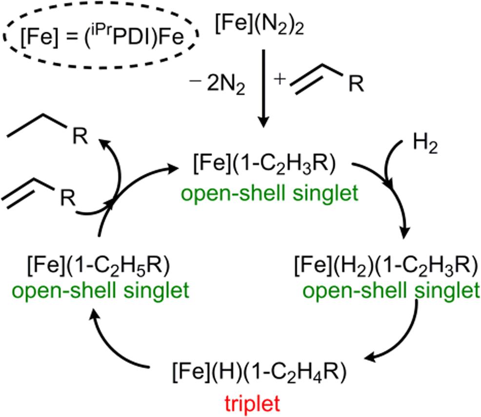 Exploring the mechanism of alkene hydrogenation catalyzed by