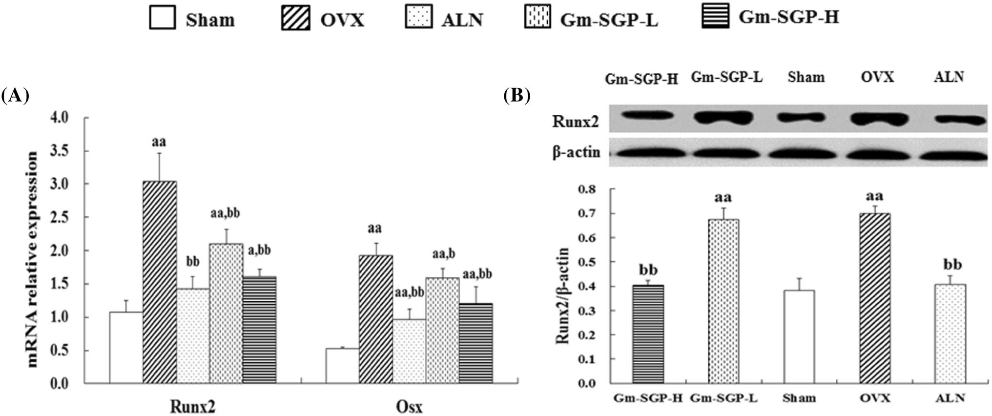 Sialoglycoprotein from Gadous morhua eggs improve high bone turnover