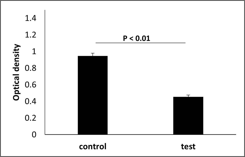 השפעת לייזר ER:YAG על הרג של חיידק מסוג E.faecalis