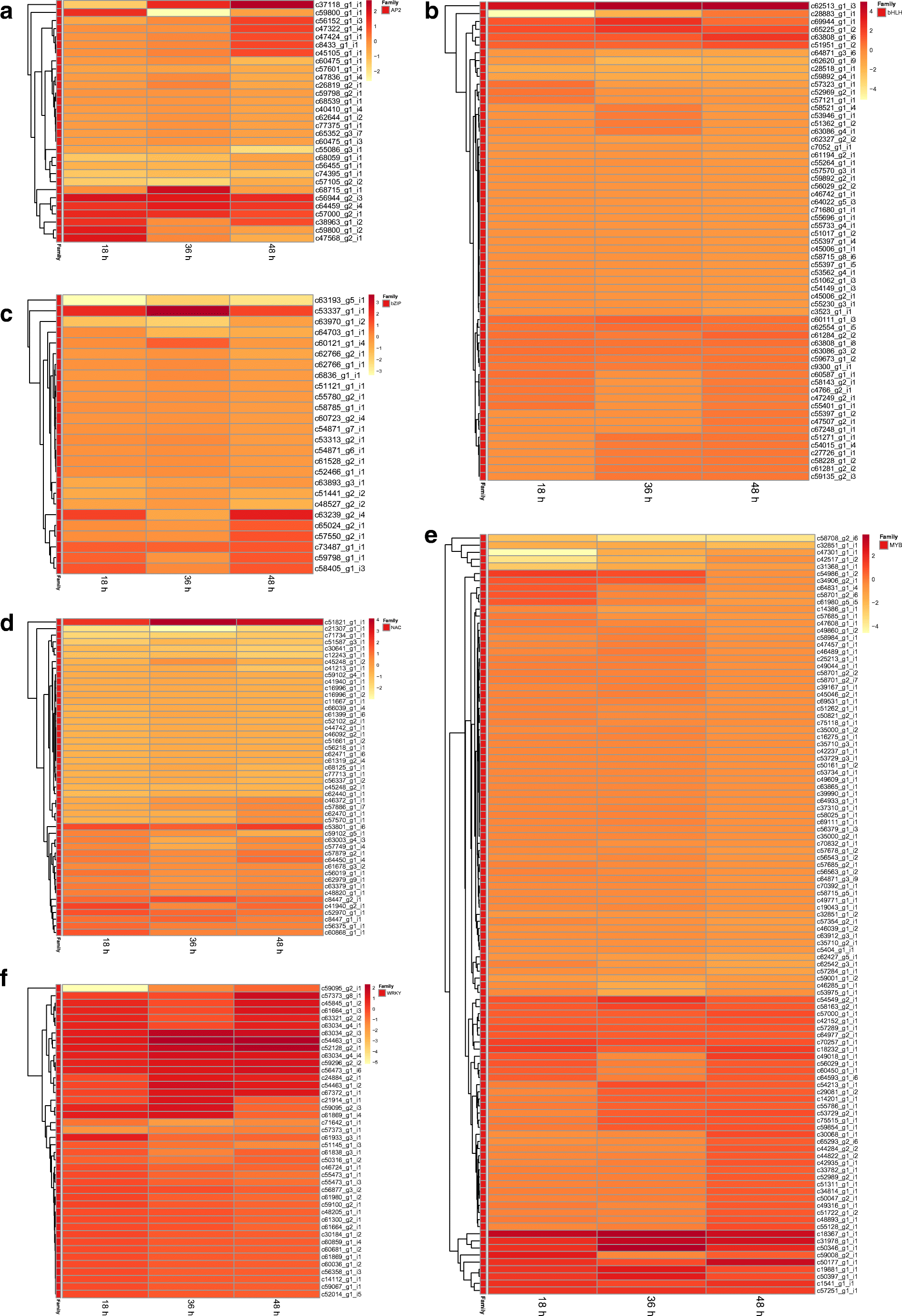 Transcriptome-based mining and expression profiling of