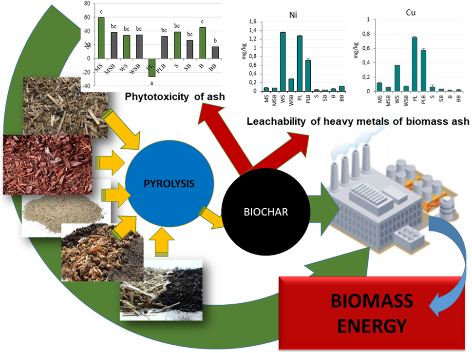 Assessment of energy parameters of biomass and biochars
