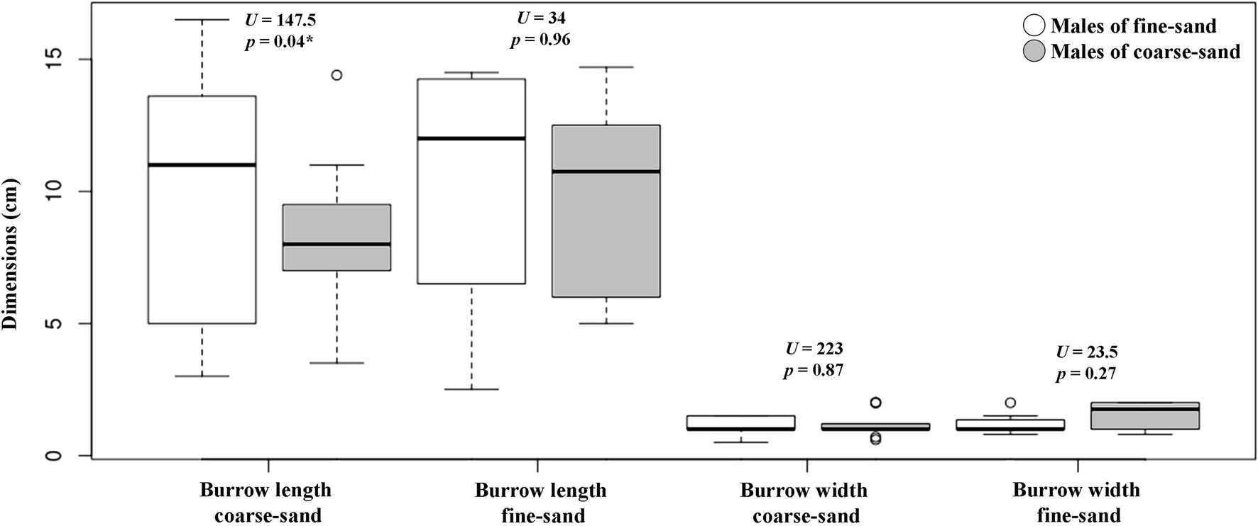 A matter of choice: substrate preference by burrow-digging