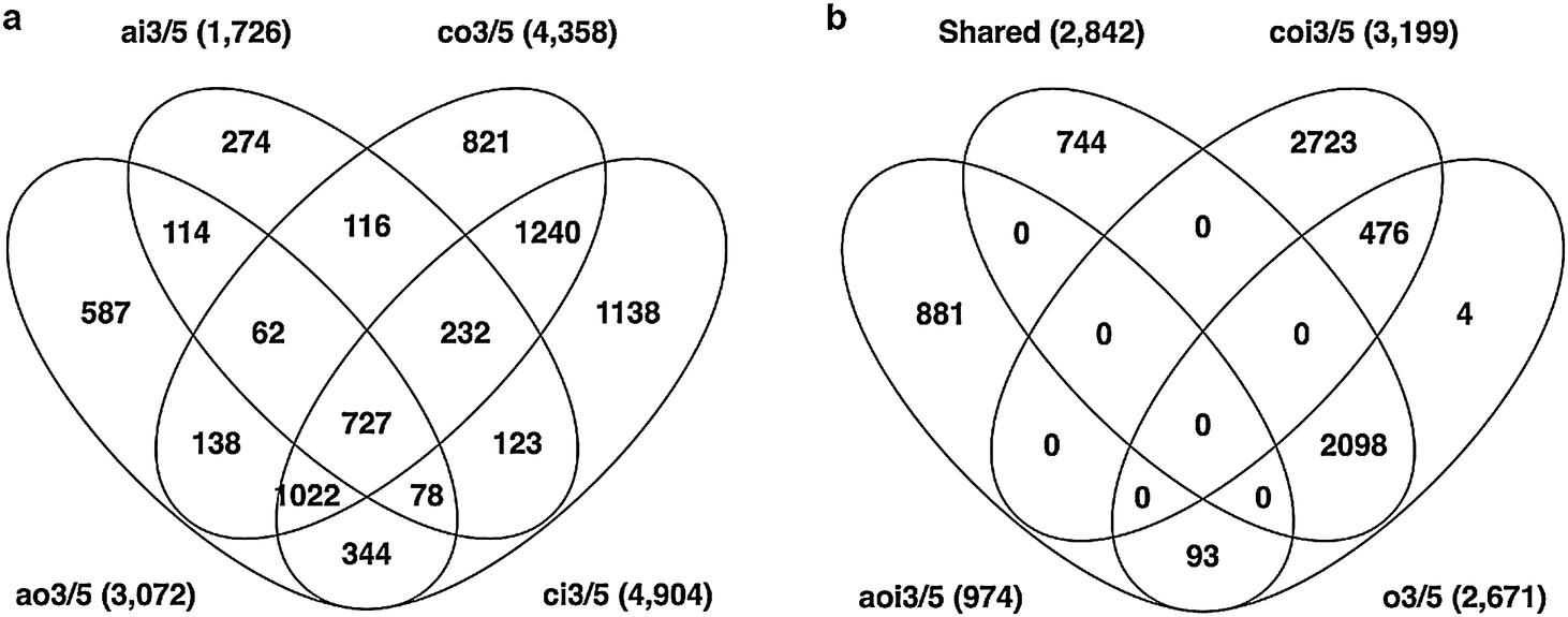 Transcriptome-wide effects of expansin gene manipulation in