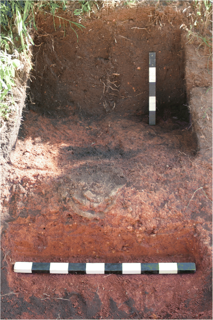 Iron Production in North Pare, Tanzania: Archaeometallurgical and