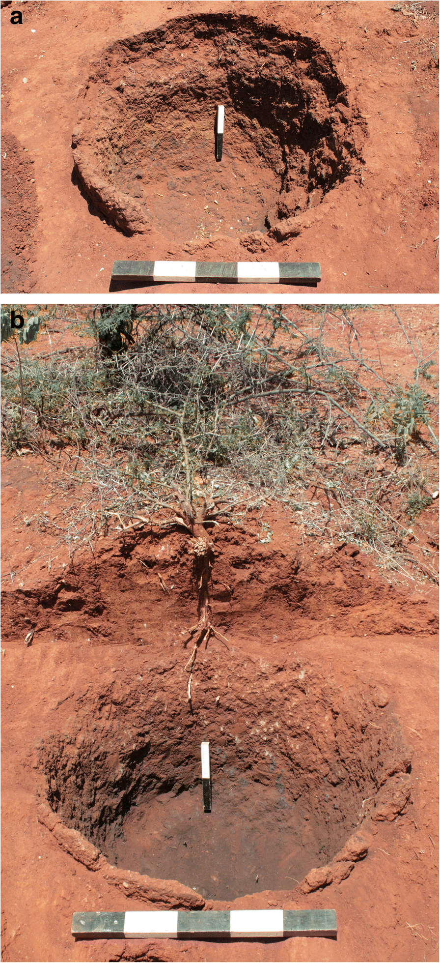 Iron Production in North Pare, Tanzania