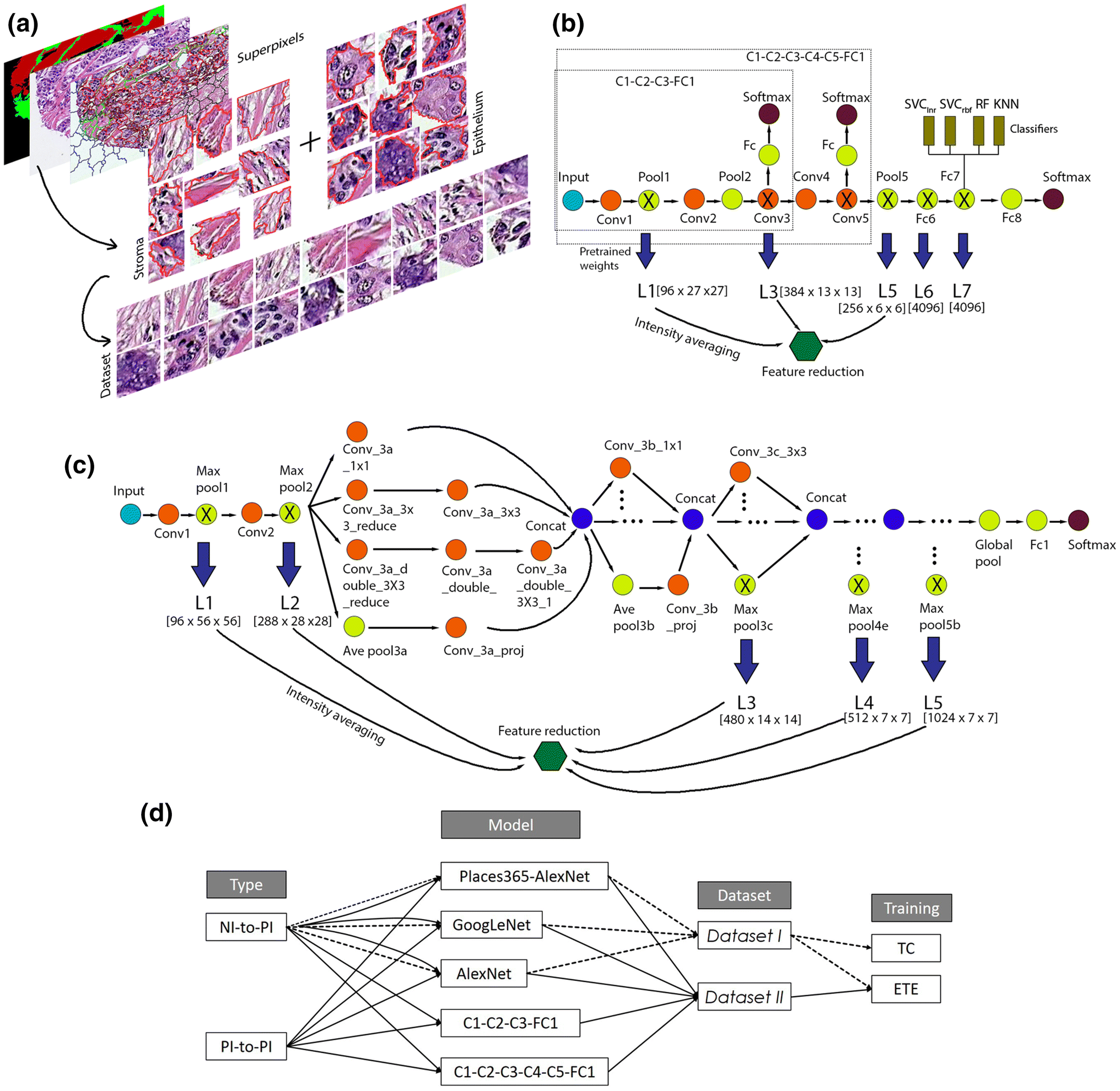 Classification of Tumor Epithelium and Stroma by Exploiting Image