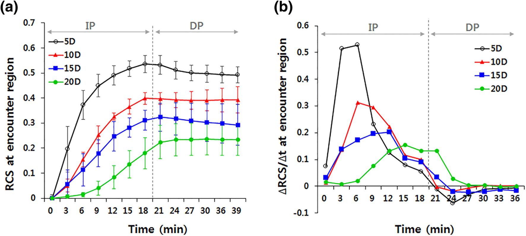 Optimal Design of Needle Array for Effective Drug Delivery