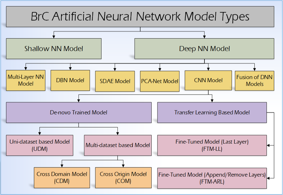 Deep learning-based breast cancer classification through medical