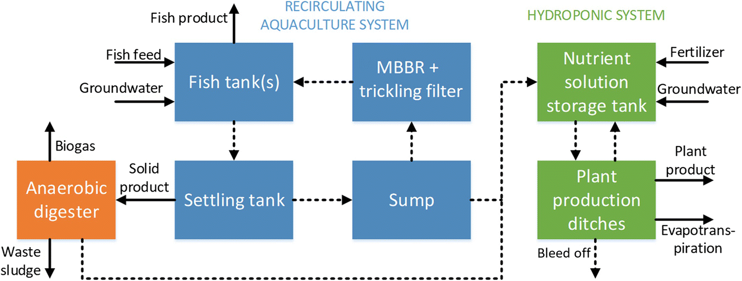 Modeling innovative aquaponics farming in Kenya | SpringerLink