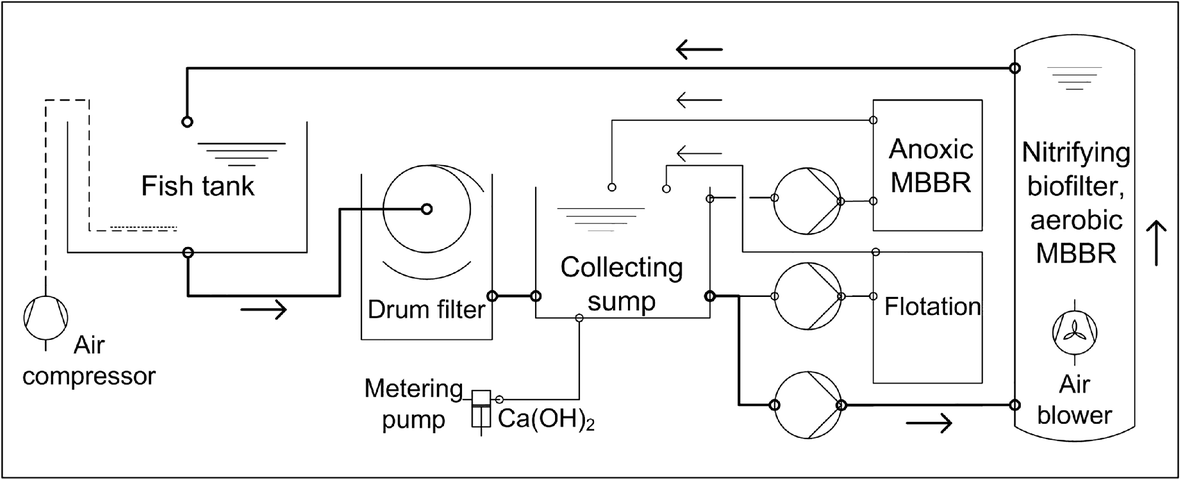 Development of denitrification in semi-automated moving bed