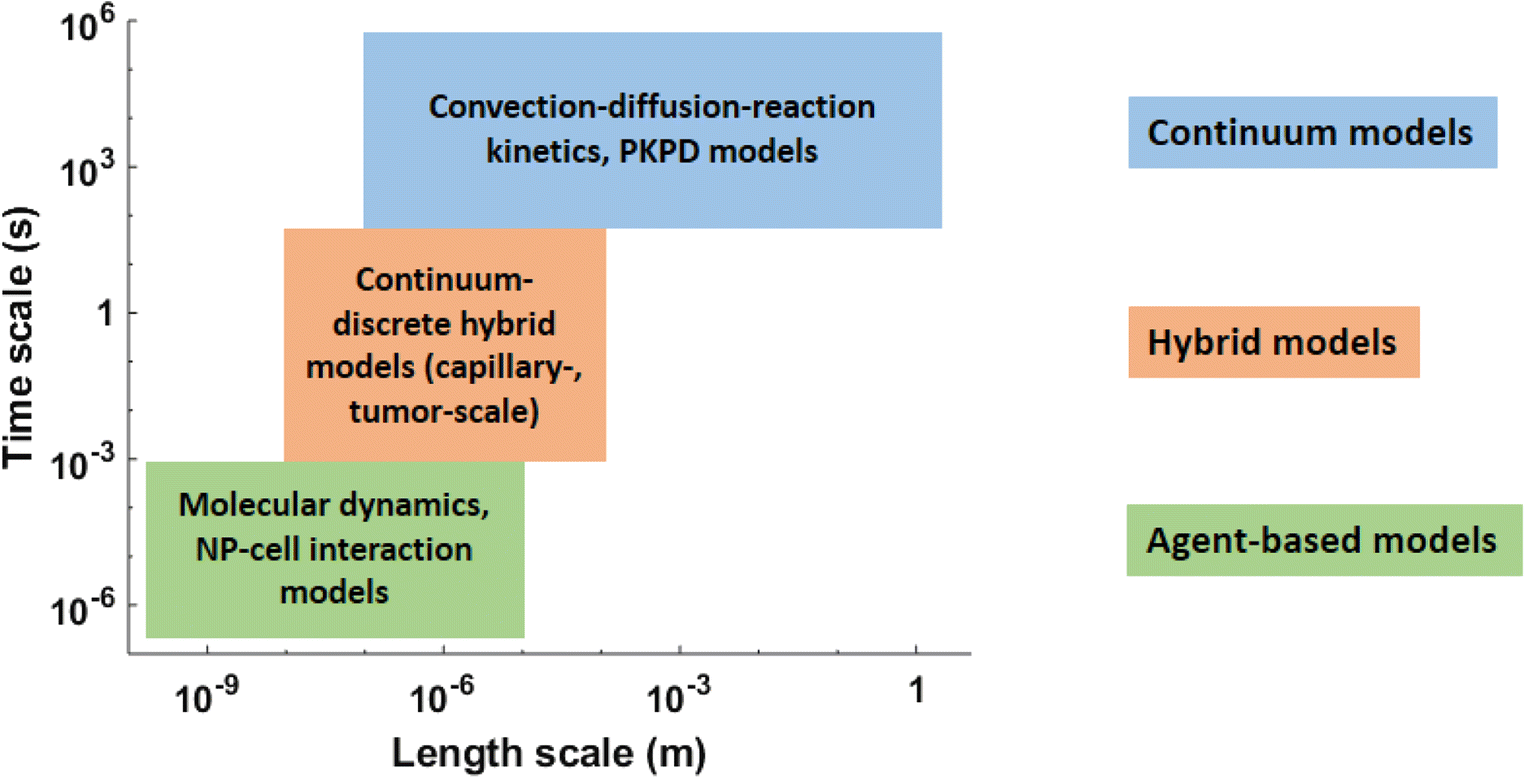 Mathematical modeling in cancer nanomedicine: a review   SpringerLink