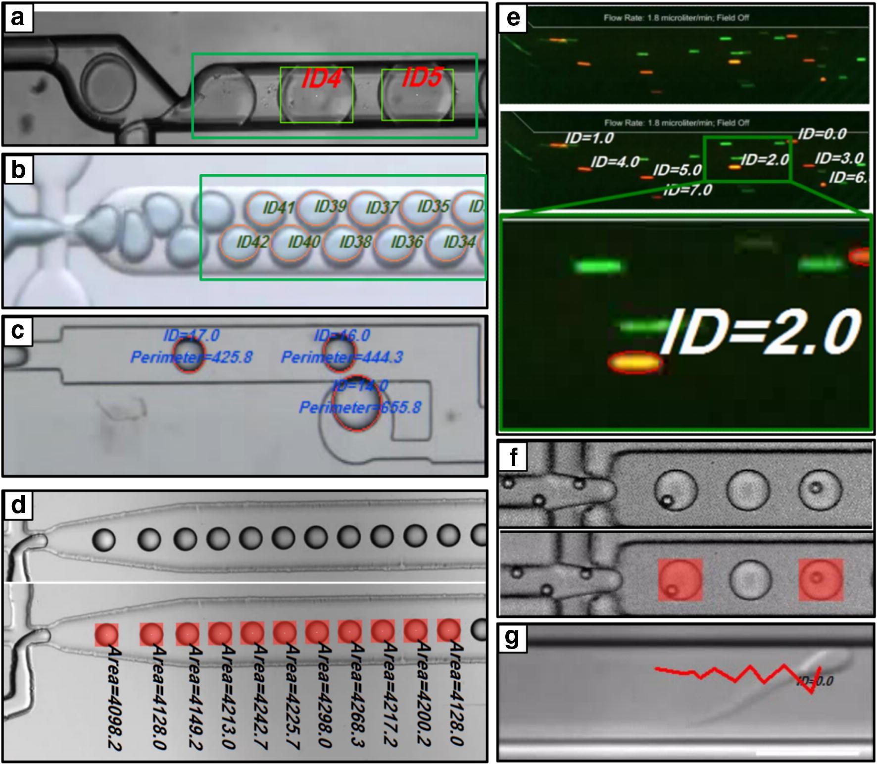 Multi-purpose machine vision platform for different microfluidics