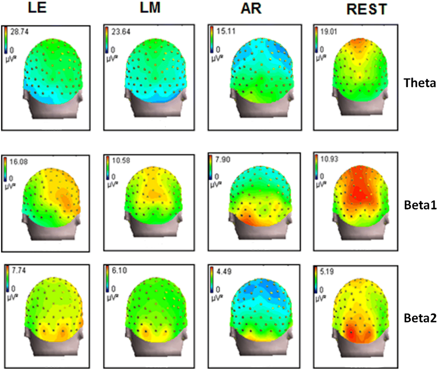 Which Reference Should We Use for EEG and ERP practice? | SpringerLink