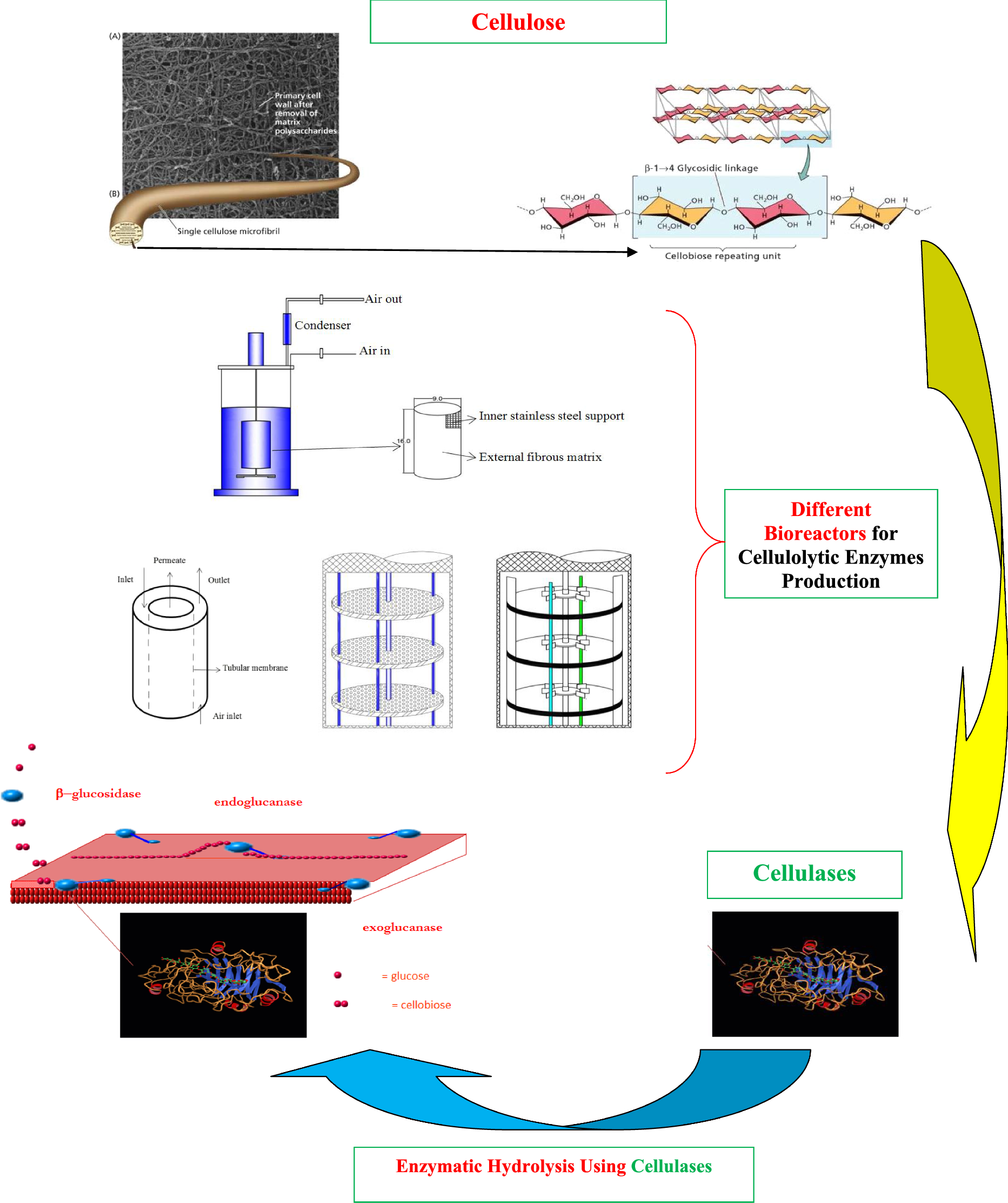 Etl Testing Useful Resources: A Review Of Bioreactor Technology Used For Enzymatic