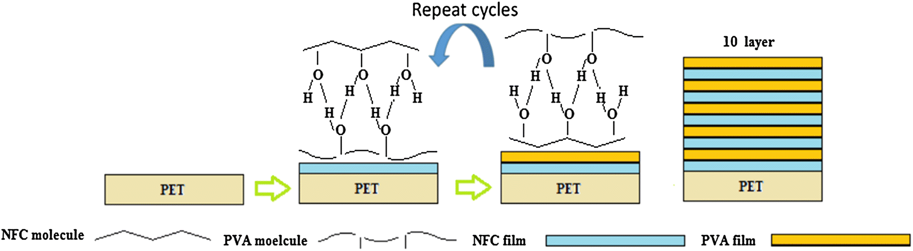 Preparation and characterization of nanocellulose–polyvinyl